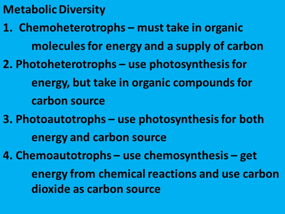 Metabolic Diversity 1.Chemoheterotrophs – must take in organic molecules for energy and a supply of carbon 2.