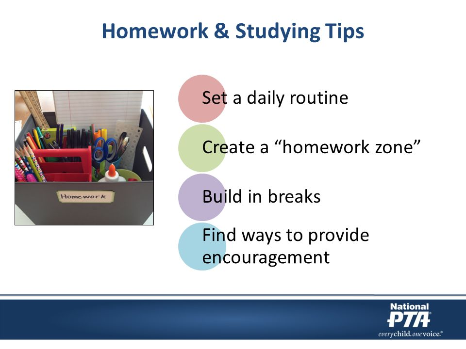 Homework & Studying Tips Set a daily routine Create a homework zone Build in breaks Find ways to provide encouragement
