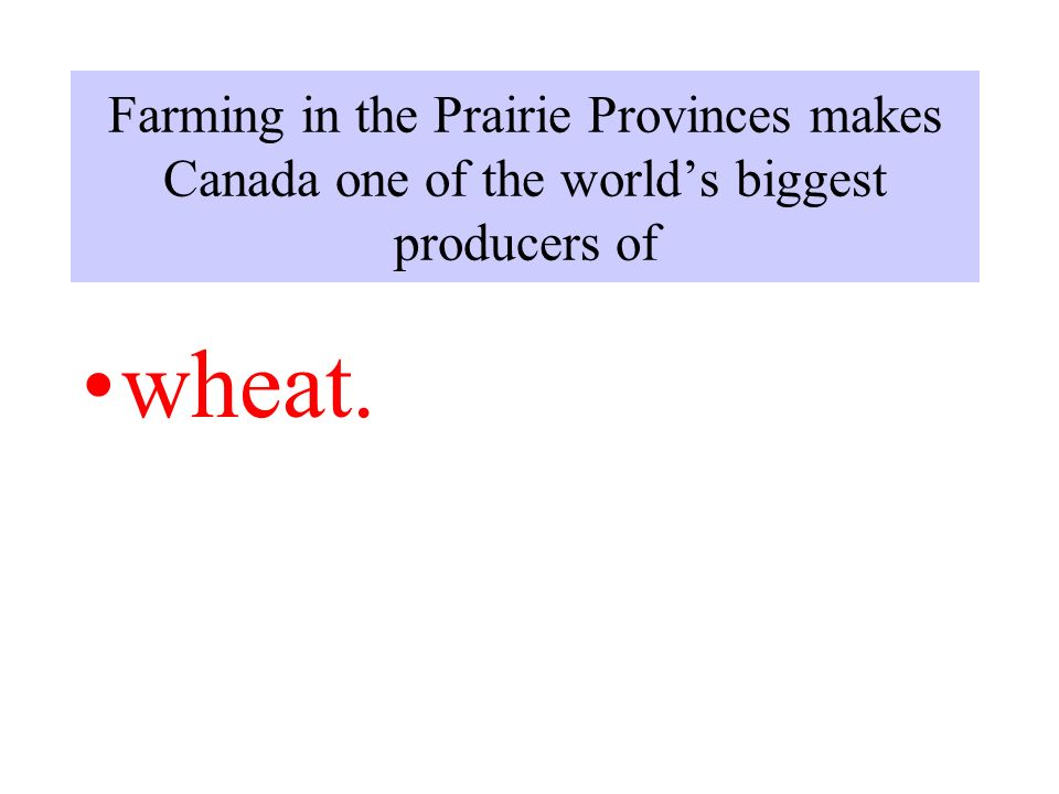 Farming in the Prairie Provinces makes Canada one of the world's biggest producers of wheat.