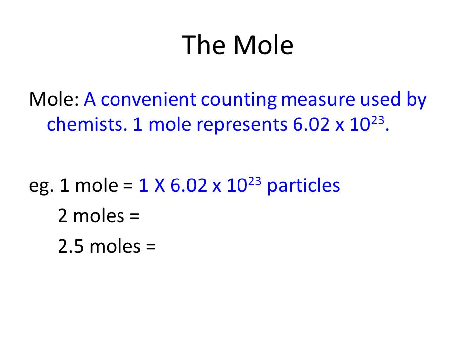 The Mole Mole: A convenient counting measure used by chemists.