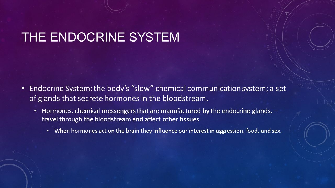 THE ENDOCRINE SYSTEM Endocrine System: the body's slow chemical communication system; a set of glands that secrete hormones in the bloodstream.