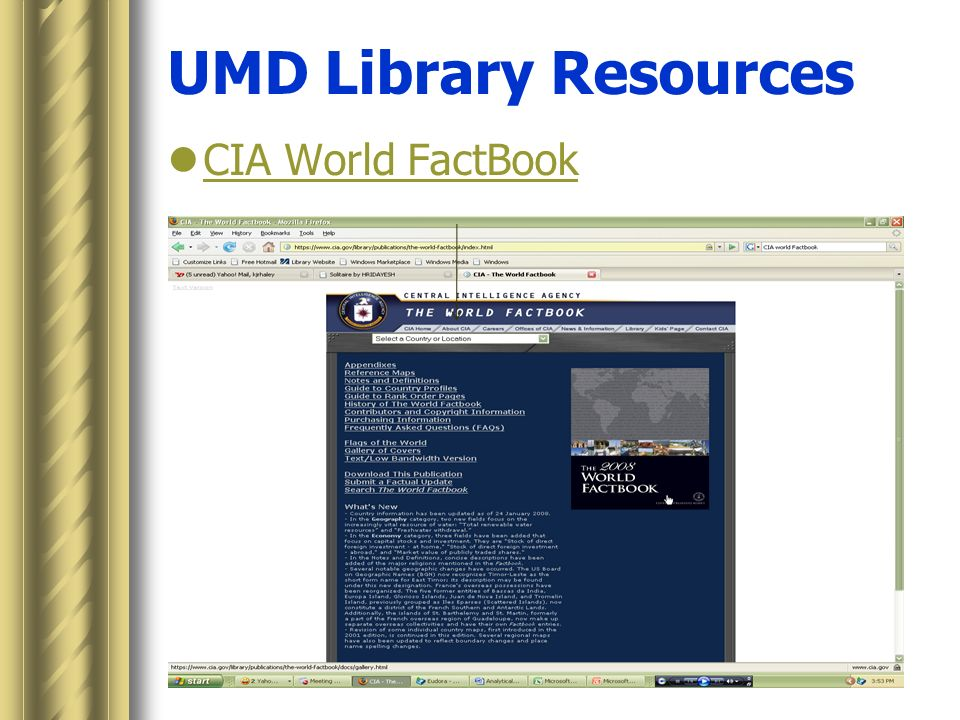 Business Resources for International Management MGT 420 Kate