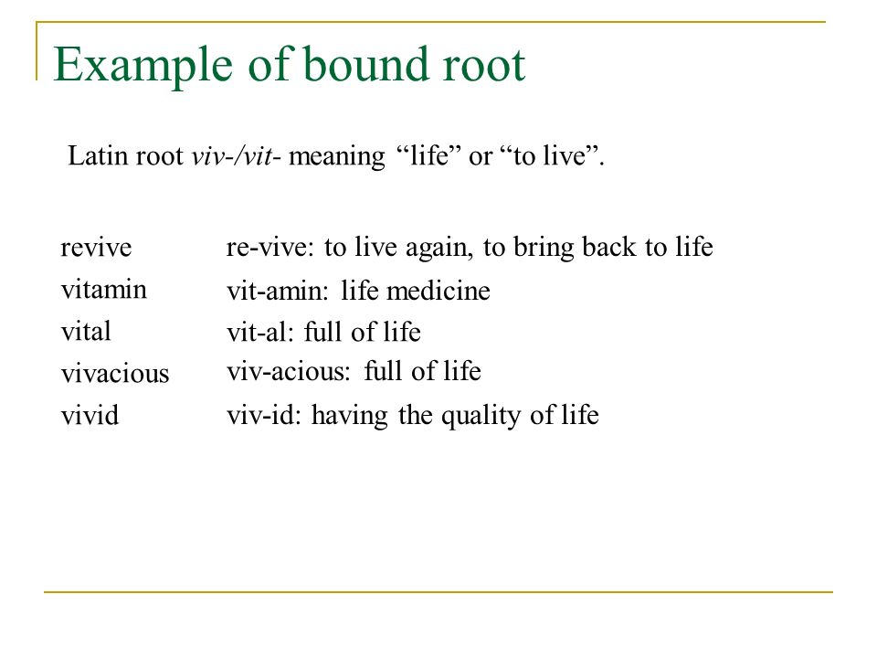 Example of bound root revive vitamin vital vivacious vivid viv-id: having the quality of life re-vive: to live again, to bring back to life vit-amin: life medicine Latin root viv-/vit- meaning life or to live .