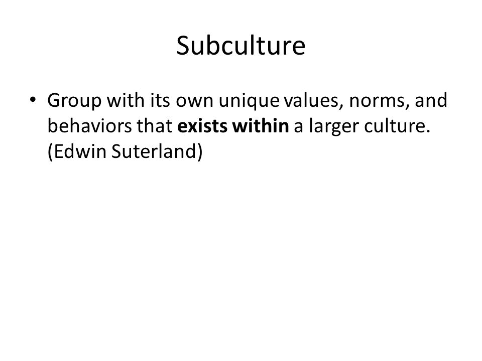 Subculture Group with its own unique values, norms, and behaviors that exists within a larger culture.