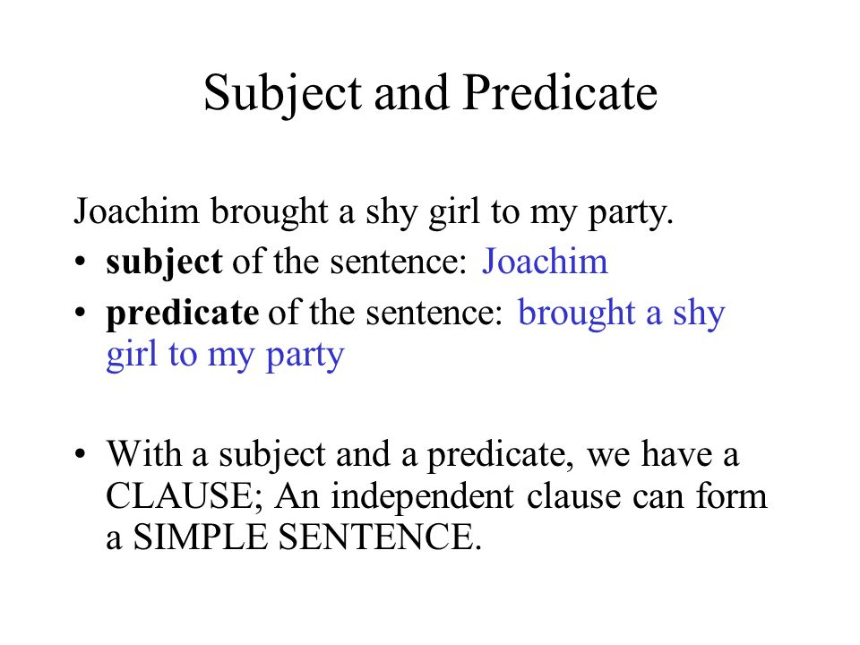 The Basic Elements of a Sentence Joachim brought a shy girl to my party.