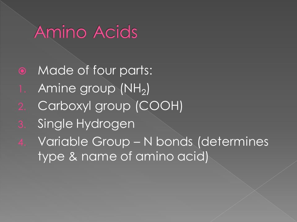 4 R Group Acid Group Amine Group Nh2 O R C C Oh H
