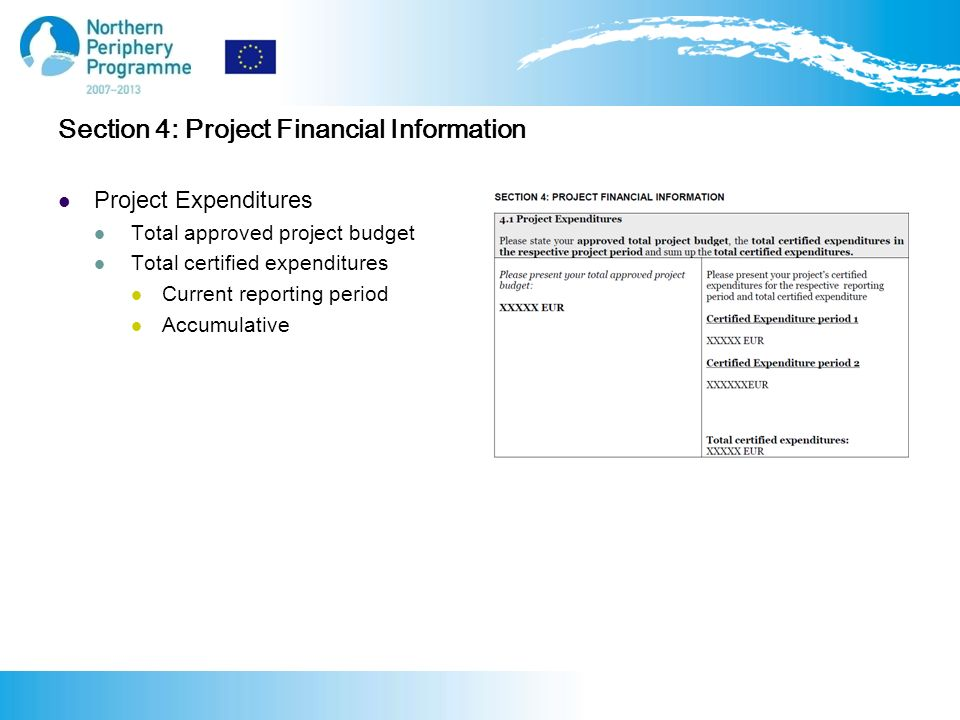 Section 4: Project Financial Information Project Expenditures Total approved project budget Total certified expenditures Current reporting period Accumulative