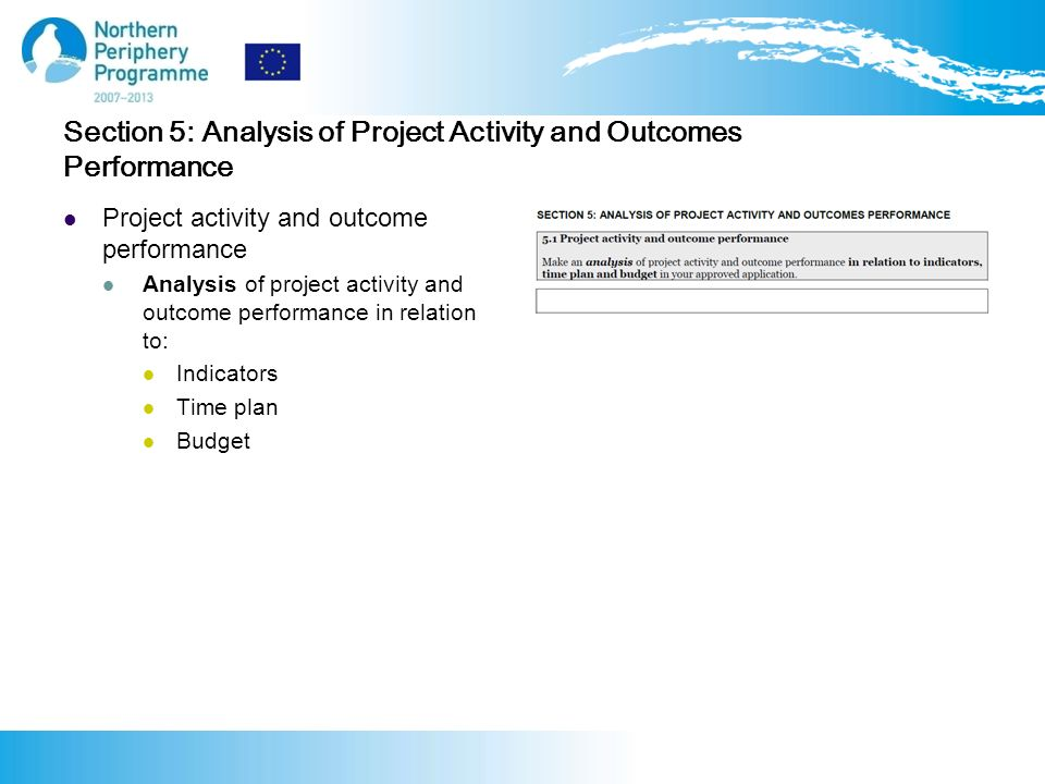 Section 5: Analysis of Project Activity and Outcomes Performance Project activity and outcome performance Analysis of project activity and outcome performance in relation to: Indicators Time plan Budget