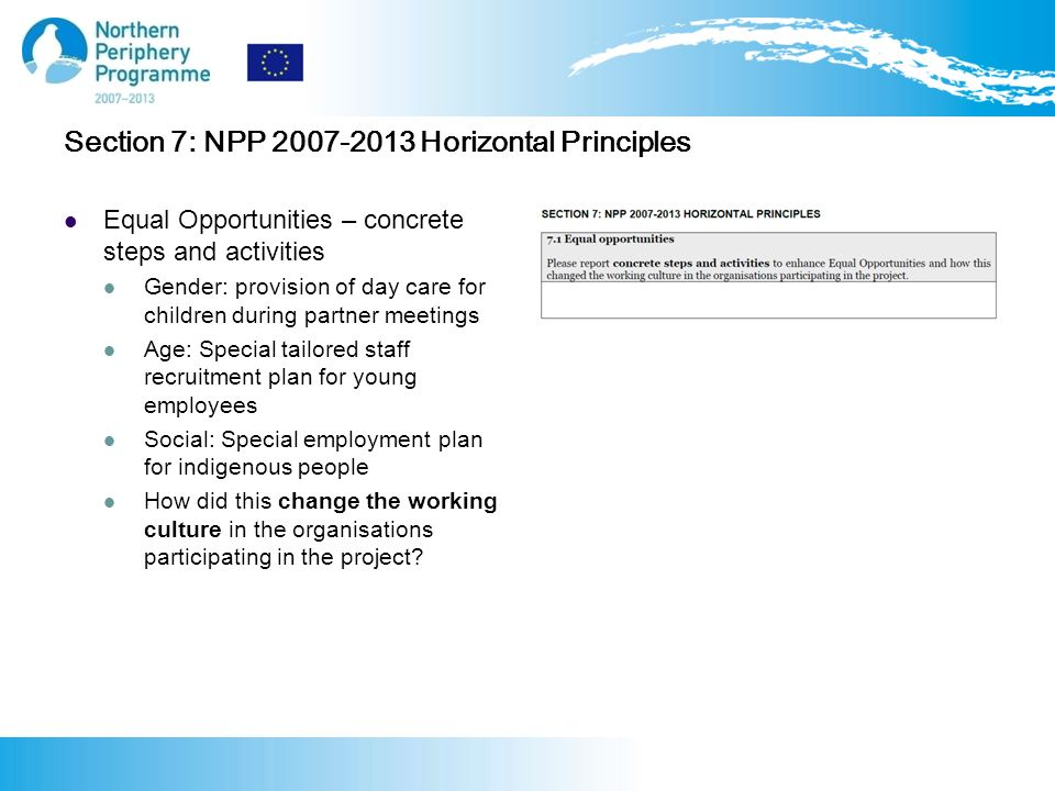 Section 7: NPP Horizontal Principles Equal Opportunities – concrete steps and activities Gender: provision of day care for children during partner meetings Age: Special tailored staff recruitment plan for young employees Social: Special employment plan for indigenous people How did this change the working culture in the organisations participating in the project