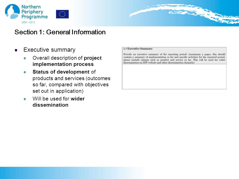 Section 1: General Information Executive summary Overall description of project implementation process Status of development of products and services (outcomes so far, compared with objectives set out in application) Will be used for wider dissemination