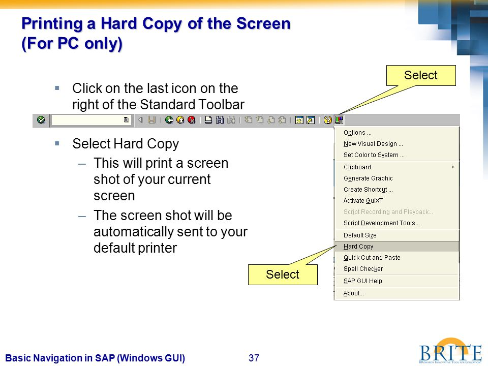 Basic Navigation in SAP For the Windows Graphical User
