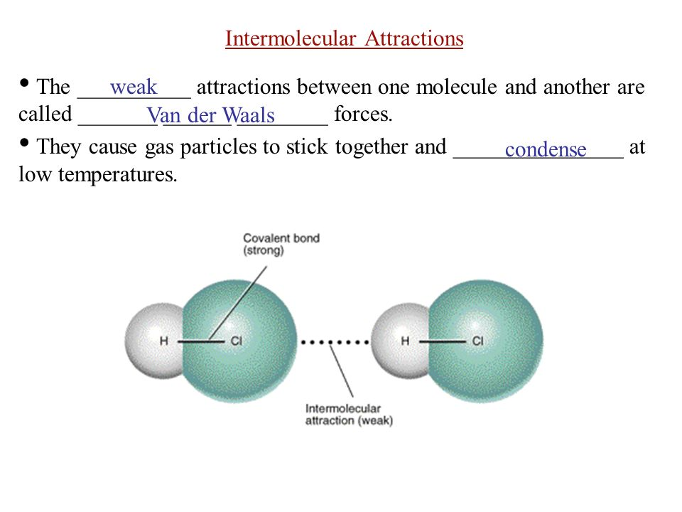 Intermolecular Attractions The __________ attractions between one molecule and another are called _______ ______ ________ forces.