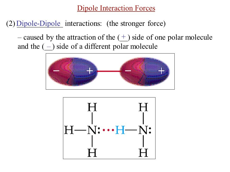 Dipole Interaction Forces (2) ____________ interactions: (the stronger force) – caused by the attraction of the (__) side of one polar molecule and the (__) side of a different polar molecule Dipole-Dipole + –