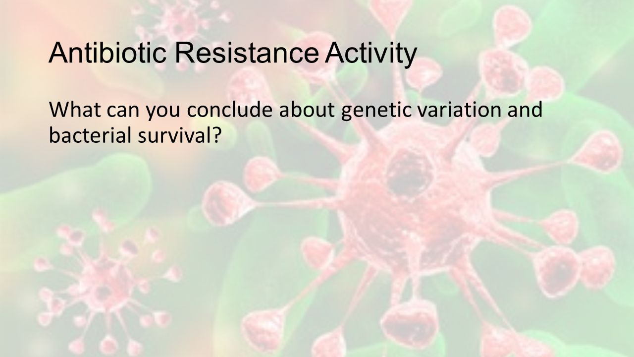 Antibiotic Resistance Activity What can you conclude about genetic variation and bacterial survival