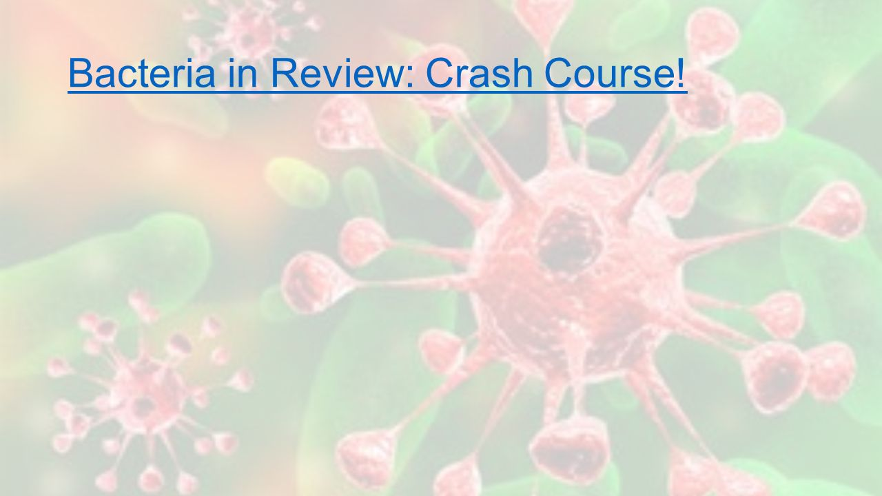 Bacteria in Review: Crash Course!