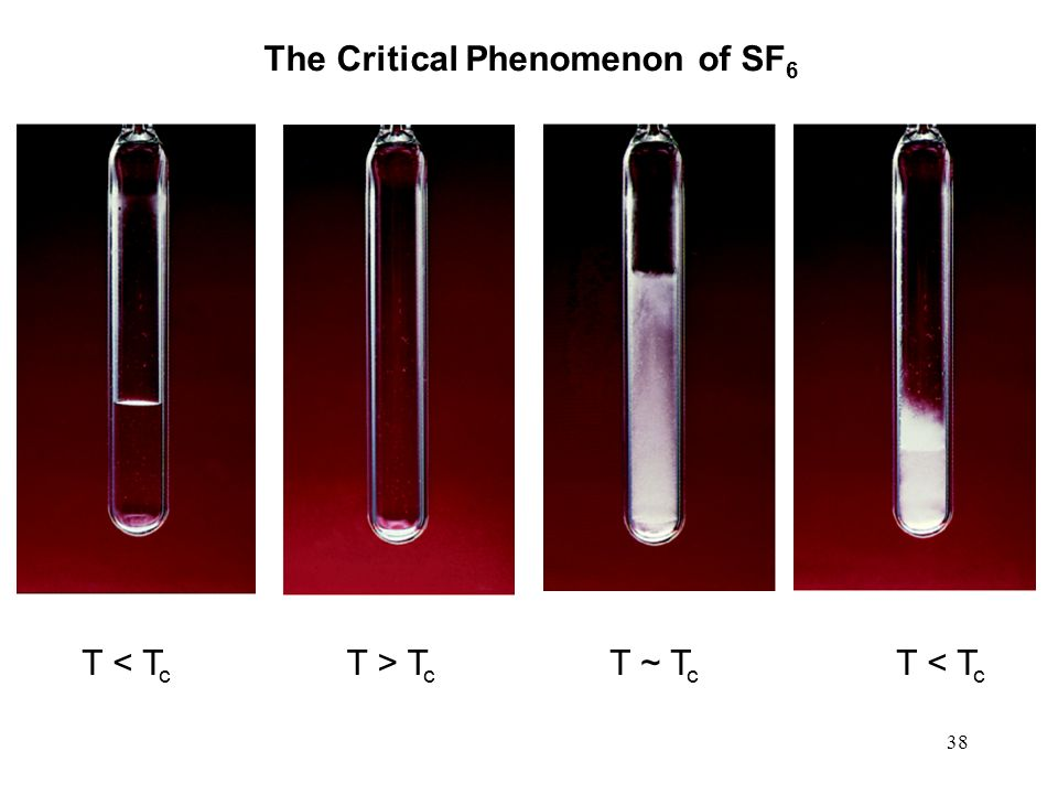 38 The Critical Phenomenon of SF 6 T < T c T > T c T ~ T c T < T c