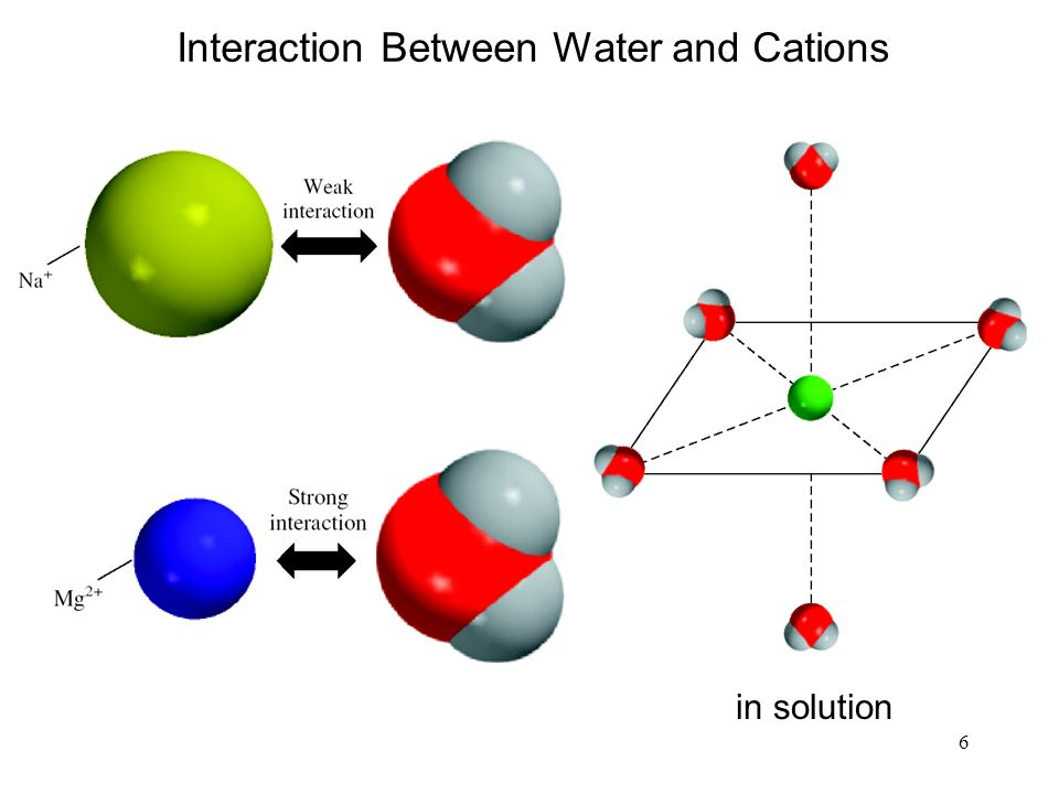 6 in solution Interaction Between Water and Cations