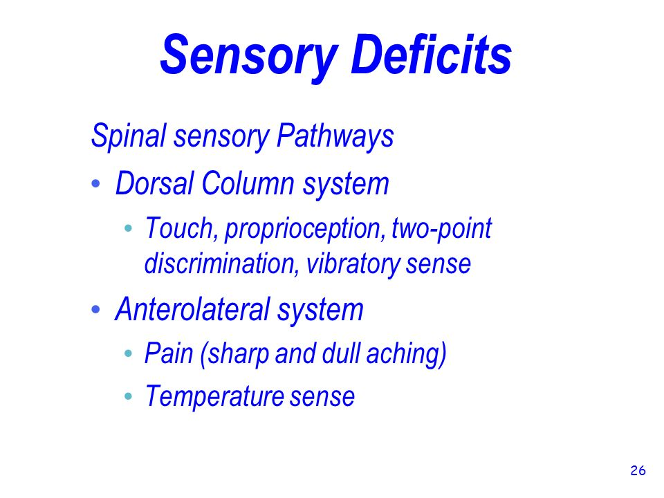 sensory deficit of touch its pain Motor sensory deficit approach to sensory deficits | learningneurologycom - localization of sensory deficits - sensory deficit of touch its pain source koreamed synapse - at the last follow-up examination, among the patients who have had neurologic deficits (major deficit: 1 case.