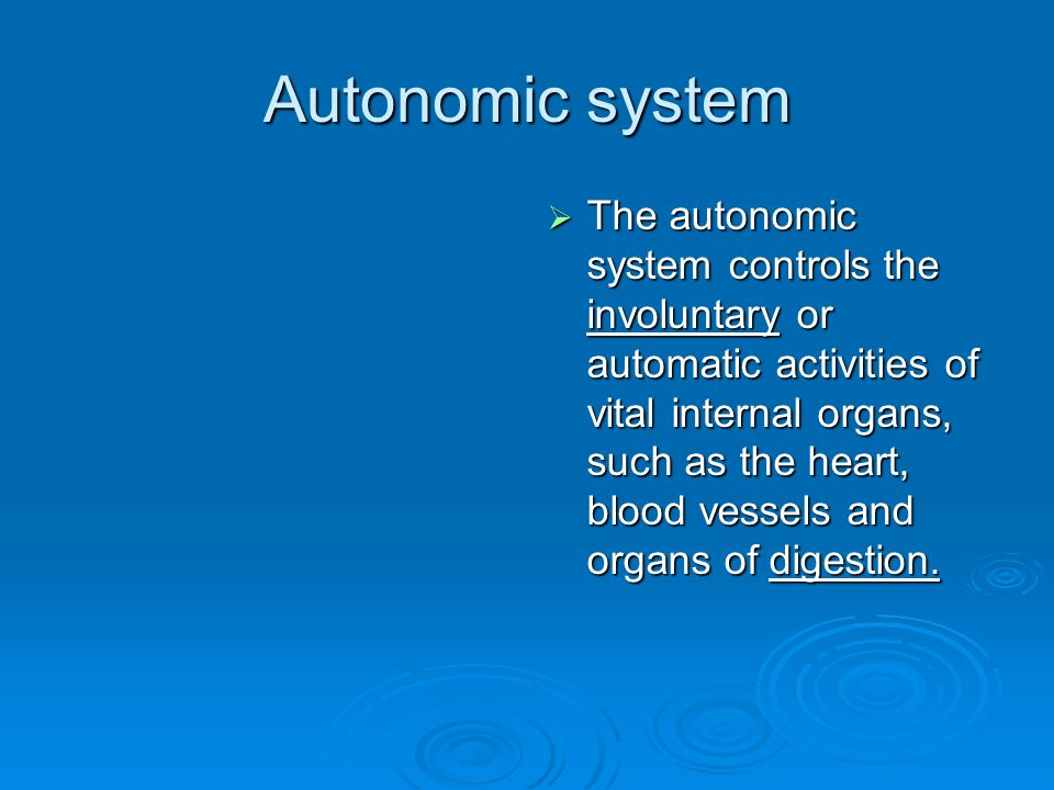 Autonomic system  The autonomic system controls the involuntary or automatic activities of vital internal organs, such as the heart, blood vessels and organs of digestion.