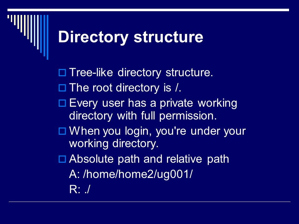 Directory structure  Tree-like directory structure.