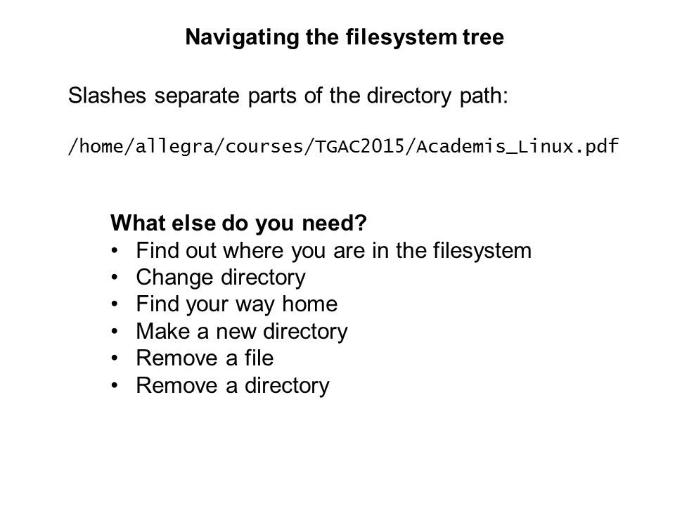 Navigating the filesystem tree Slashes separate parts of the directory path: /home/allegra/courses/TGAC2015/Academis_Linux.pdf What else do you need.
