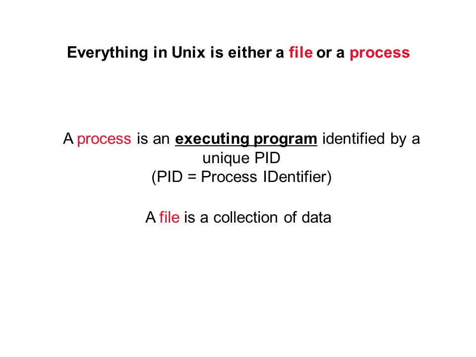Everything in Unix is either a file or a process A process is an executing program identified by a unique PID (PID = Process IDentifier) A file is a collection of data