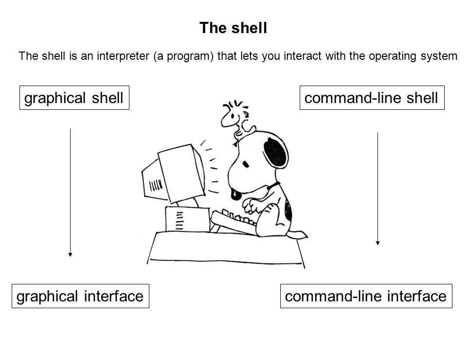 The shell The shell is an interpreter (a program) that lets you interact with the operating system graphical interface graphical shellcommand-line shell command-line interface