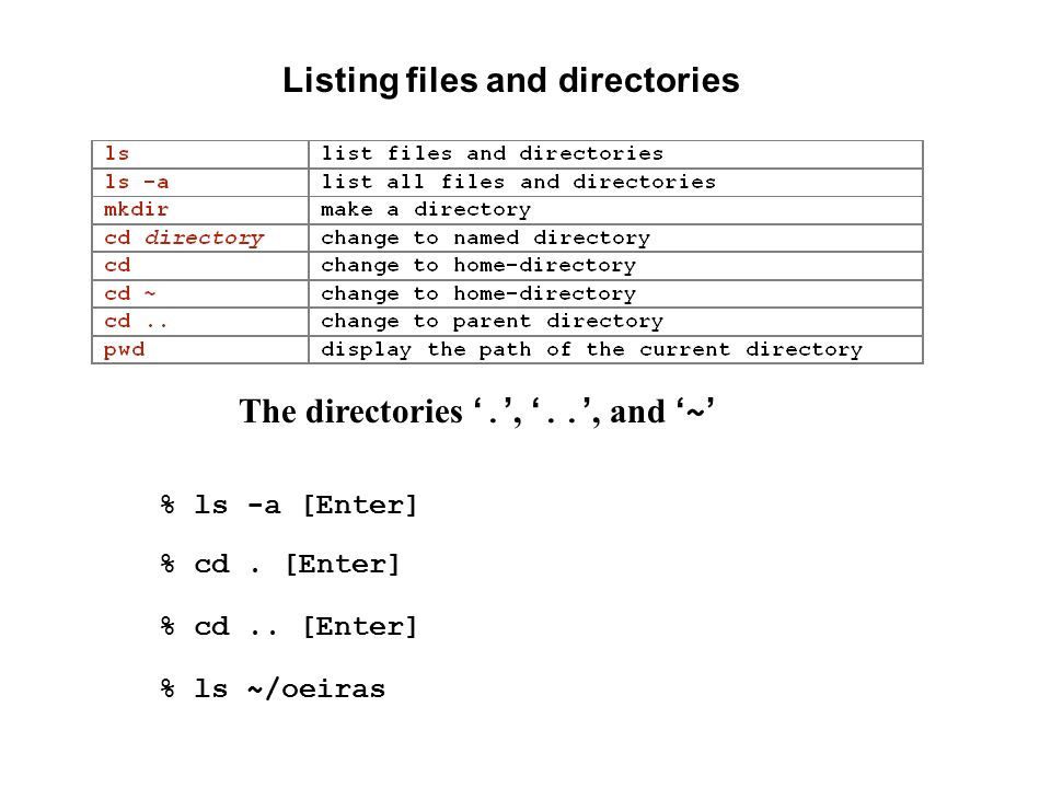 Listing files and directories The directories '. ', '..