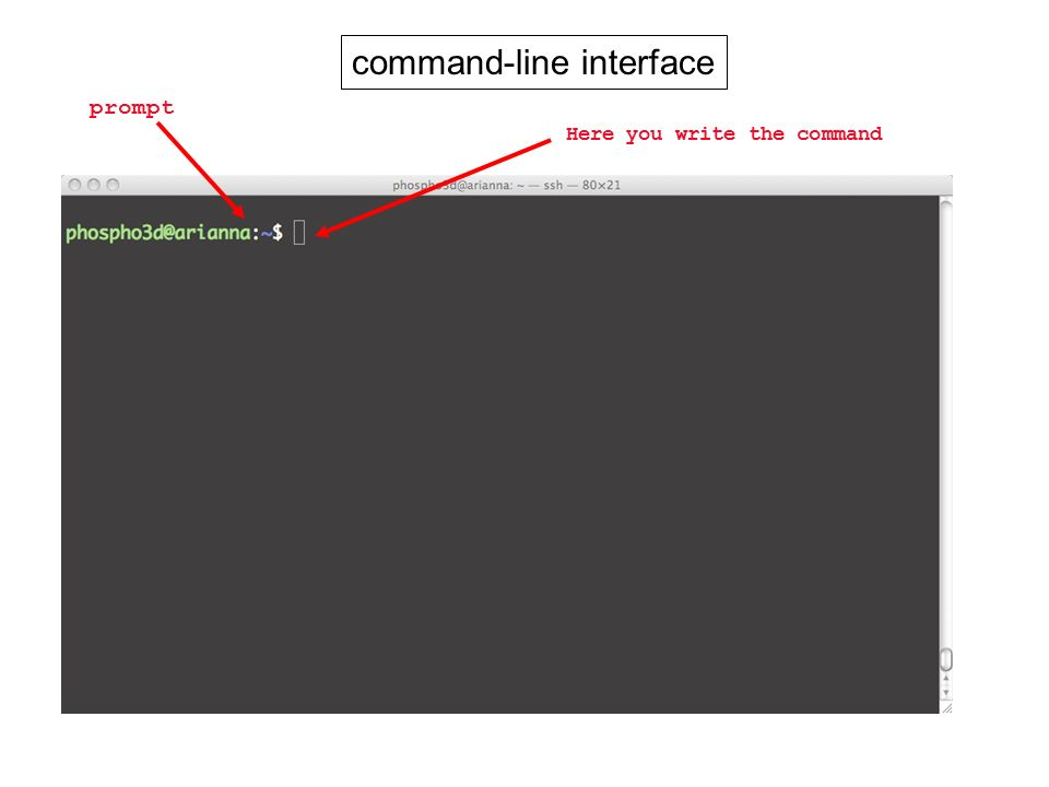 command-line interface prompt Here you write the command