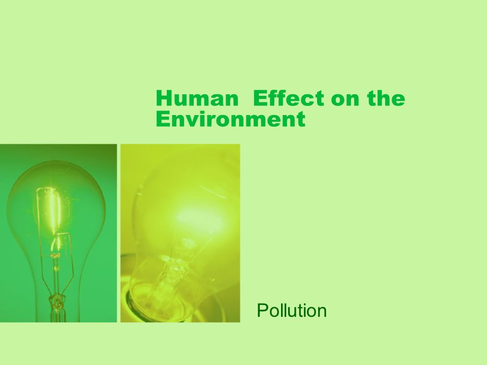 Human Effect on the Environment Pollution