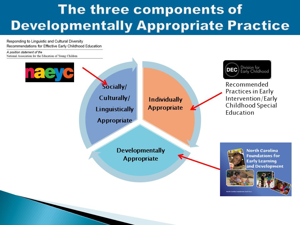 three components of developmentally appropriate practice