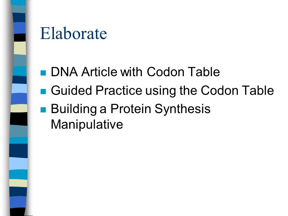 Elaborate n DNA Article with Codon Table n Guided Practice using the Codon Table n Building a Protein Synthesis Manipulative