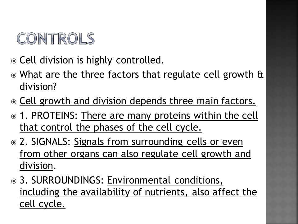  Cell division is highly controlled.