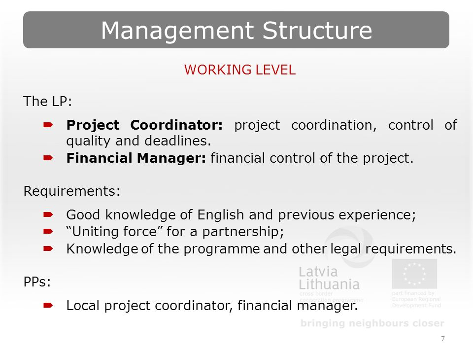 Management Structure 7 WORKING LEVEL The LP:  Project Coordinator: project coordination, control of quality and deadlines.