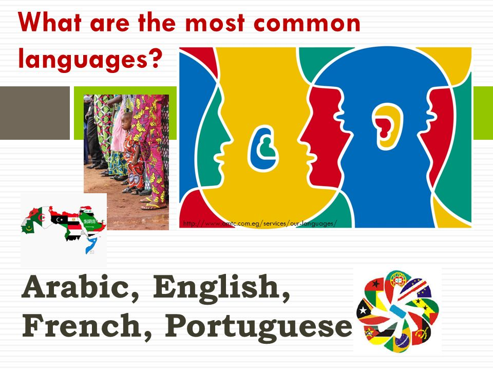 Arabic, English, French, Portuguese What are the most common languages.