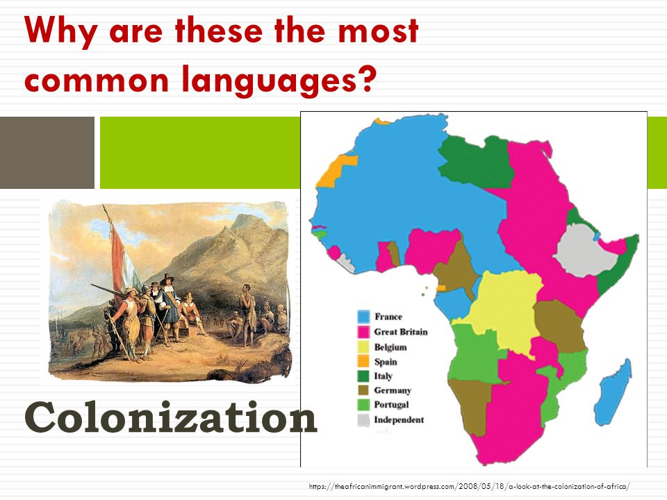 Why are these the most common languages.