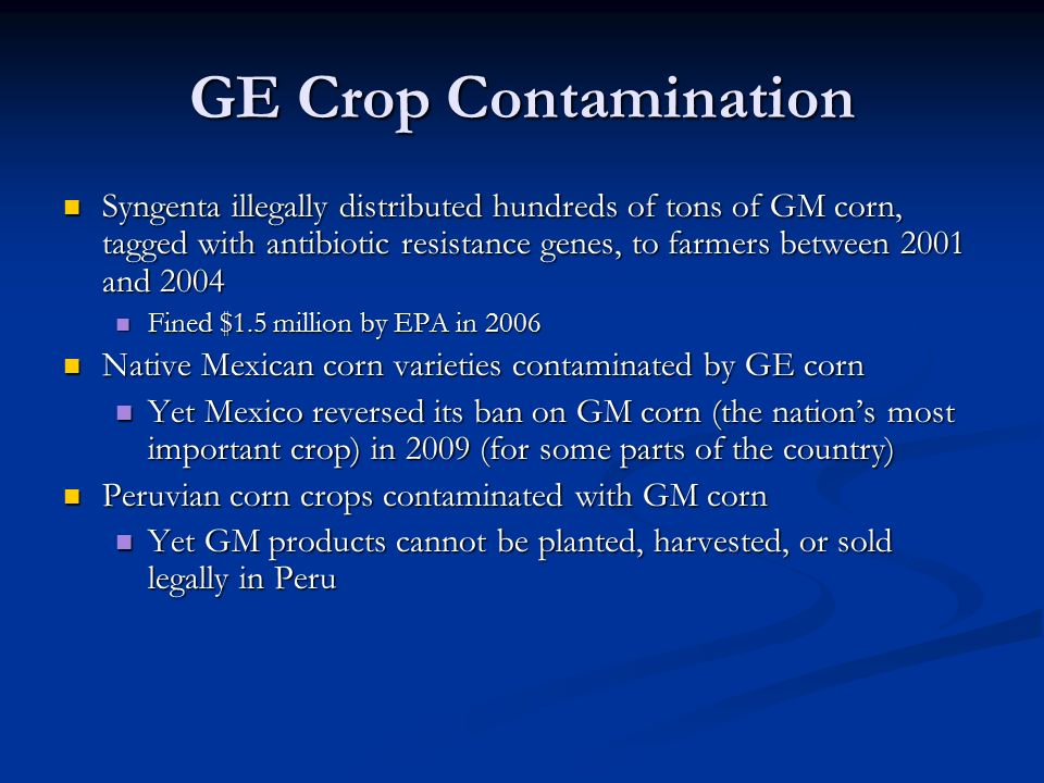 GE Crop Contamination Syngenta illegally distributed hundreds of tons of GM corn, tagged with antibiotic resistance genes, to farmers between 2001 and 2004 Syngenta illegally distributed hundreds of tons of GM corn, tagged with antibiotic resistance genes, to farmers between 2001 and 2004 Fined $1.5 million by EPA in 2006 Fined $1.5 million by EPA in 2006 Native Mexican corn varieties contaminated by GE corn Native Mexican corn varieties contaminated by GE corn Yet Mexico reversed its ban on GM corn (the nation's most important crop) in 2009 (for some parts of the country) Yet Mexico reversed its ban on GM corn (the nation's most important crop) in 2009 (for some parts of the country) Peruvian corn crops contaminated with GM corn Peruvian corn crops contaminated with GM corn Yet GM products cannot be planted, harvested, or sold legally in Peru Yet GM products cannot be planted, harvested, or sold legally in Peru