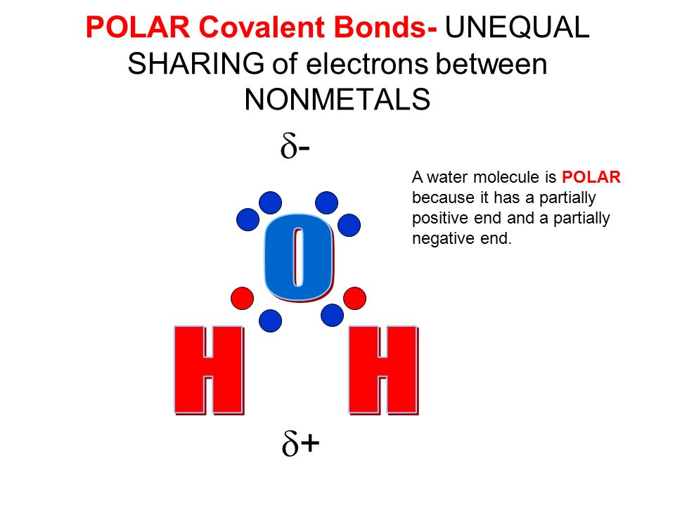 POLAR Covalent Bonds- UNEQUAL SHARING of electrons between NONMETALS ++ -- A water molecule is POLAR because it has a partially positive end and a partially negative end.