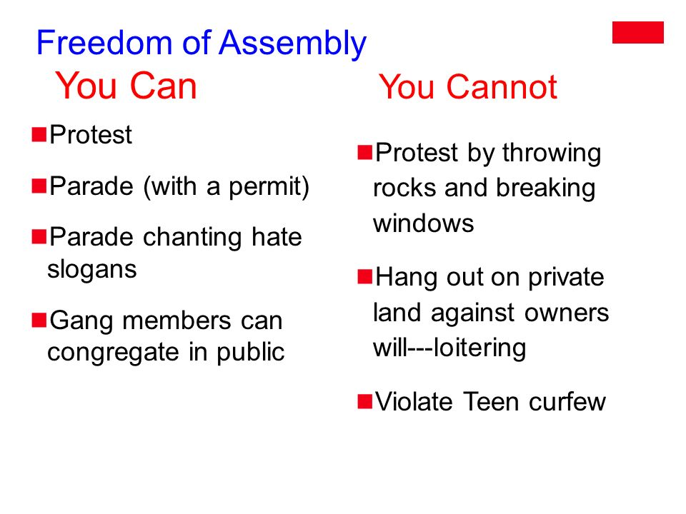 Freedom of Assembly You Can You Cannot Protest Parade (with a permit) Parade chanting hate slogans Gang members can congregate in public Protest by throwing rocks and breaking windows Hang out on private land against owners will---loitering Violate Teen curfew
