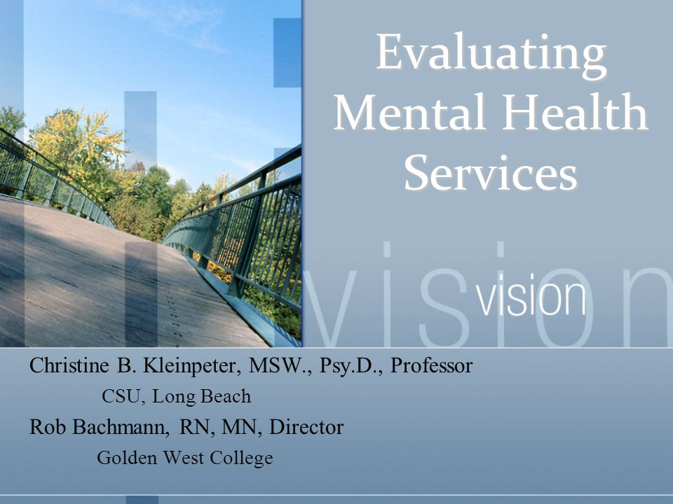 Evaluating Mental Health Services Christine B Kleinpeter Msw Psy