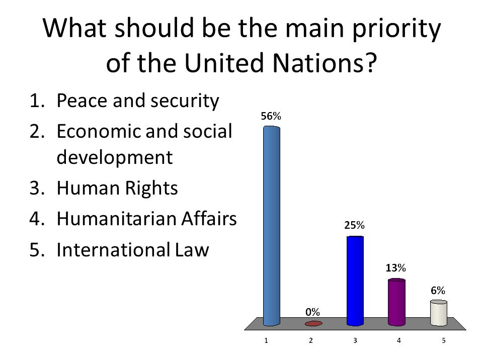 What should be the main priority of the United Nations.