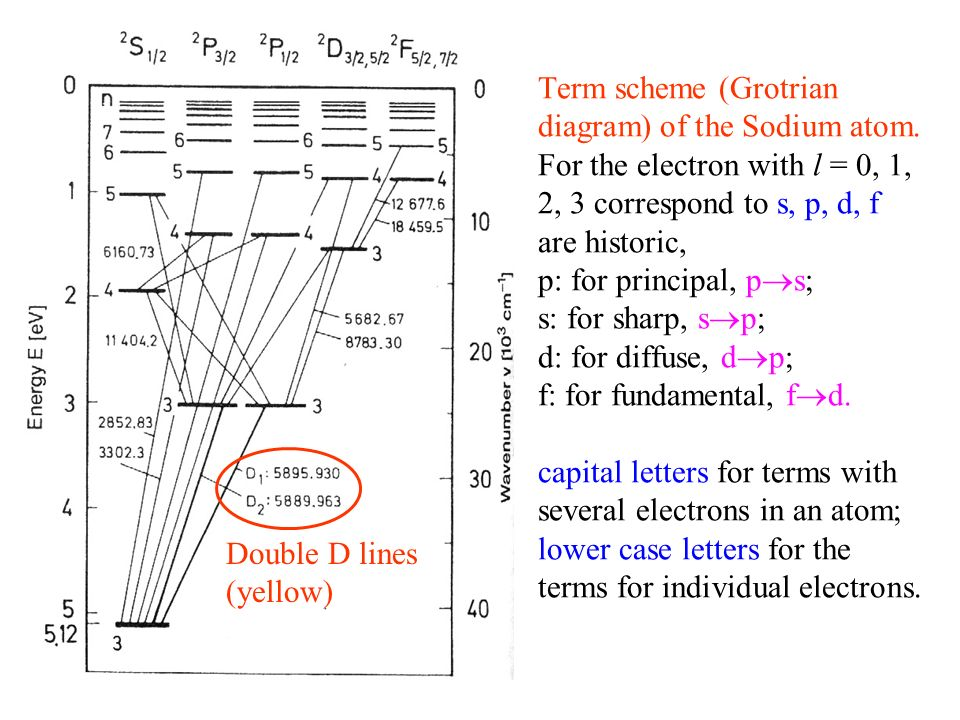 The diffuse or first secondary series, with transitions from d to p electron terms: The Bergmann or fundamental series with the transitions from f to d electron terms: