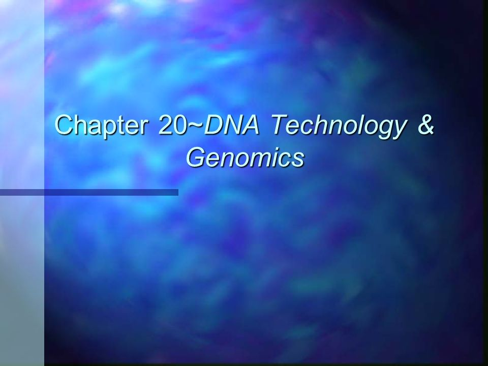 Chapter 20~DNA Technology & Genomics