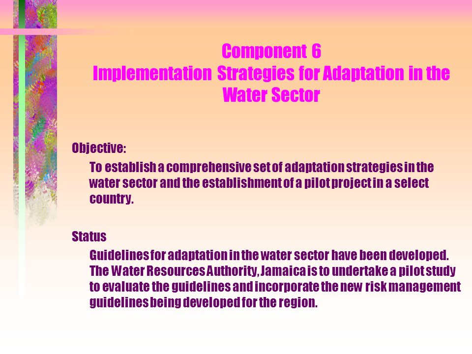 Component 6 Implementation Strategies for Adaptation in the Water Sector Objective: To establish a comprehensive set of adaptation strategies in the water sector and the establishment of a pilot project in a select country.