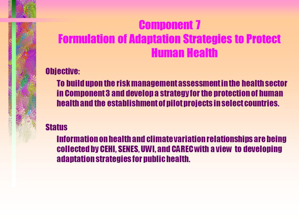 Component 7 Formulation of Adaptation Strategies to Protect Human Health Objective: To build upon the risk management assessment in the health sector in Component 3 and develop a strategy for the protection of human health and the establishment of pilot projects in select countries.