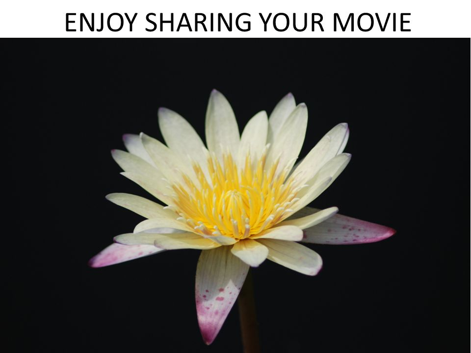 ENJOY SHARING YOUR MOVIE