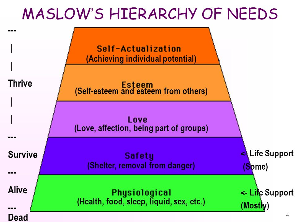 4 MASLOW ' S HIERARCHY OF NEEDS <- Life Support (Some) <- Life Support (Mostly) (Achieving individual potential) (Self-esteem and esteem from others) (Love, affection, being part of groups) (Shelter, removal from danger) (Health, food, sleep, liquid, sex, etc.) --- | Thrive | --- Survive --- Alive --- Dead