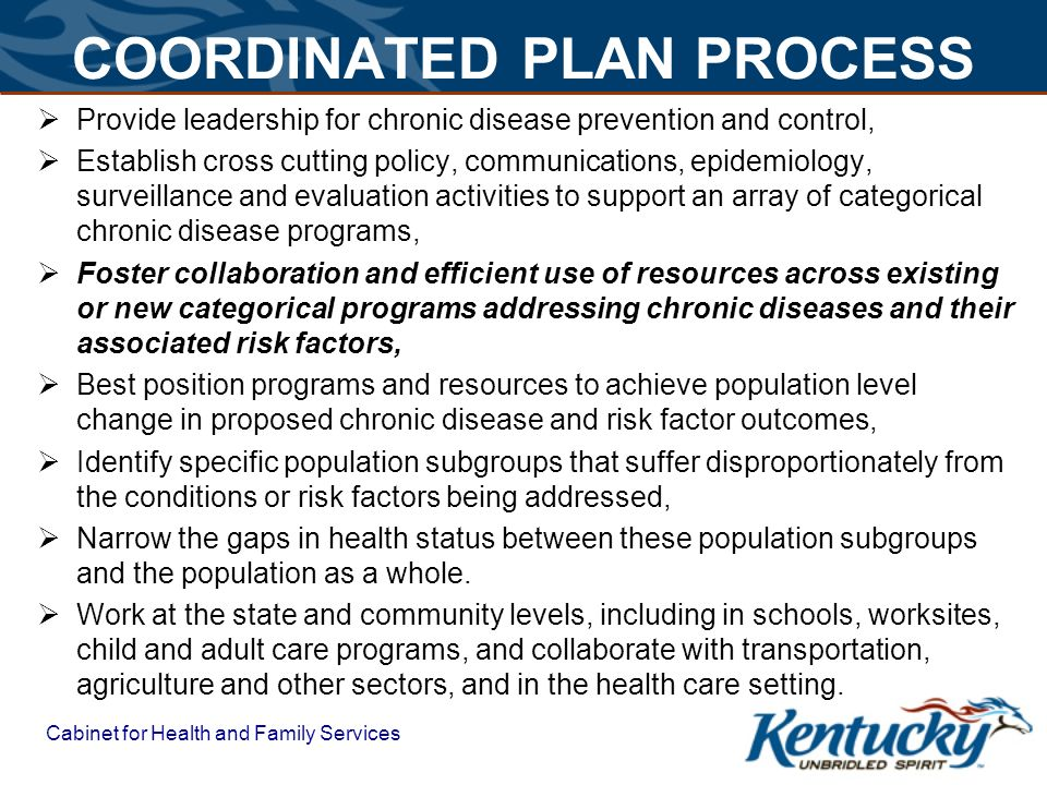 COORDINATED PLAN PROCESS  Provide leadership for chronic disease prevention and control,  Establish cross cutting policy, communications, epidemiology, surveillance and evaluation activities to support an array of categorical chronic disease programs,  Foster collaboration and efficient use of resources across existing or new categorical programs addressing chronic diseases and their associated risk factors,  Best position programs and resources to achieve population level change in proposed chronic disease and risk factor outcomes,  Identify specific population subgroups that suffer disproportionately from the conditions or risk factors being addressed,  Narrow the gaps in health status between these population subgroups and the population as a whole.