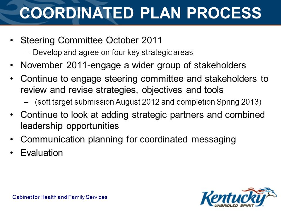 COORDINATED PLAN PROCESS Steering Committee October 2011 –Develop and agree on four key strategic areas November 2011-engage a wider group of stakeholders Continue to engage steering committee and stakeholders to review and revise strategies, objectives and tools – (soft target submission August 2012 and completion Spring 2013) Continue to look at adding strategic partners and combined leadership opportunities Communication planning for coordinated messaging Evaluation.