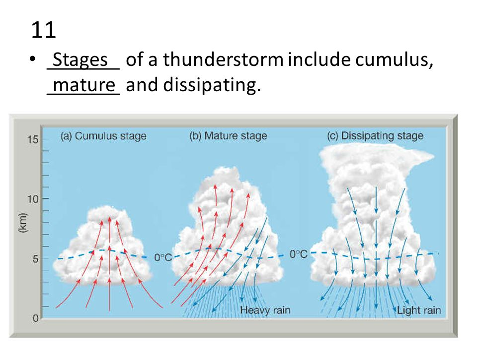 11 _______ of a thunderstorm include cumulus, _______ and dissipating. Stages mature